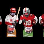 Anheuser Busch Ohio Sports Standup Displays